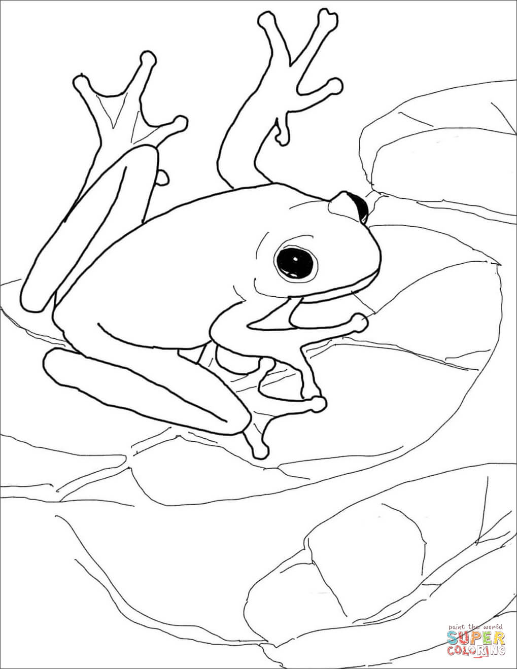 American Green Tree Frog Coloring Page | Free Printable Coloring Pages - Printable Frog Puzzle