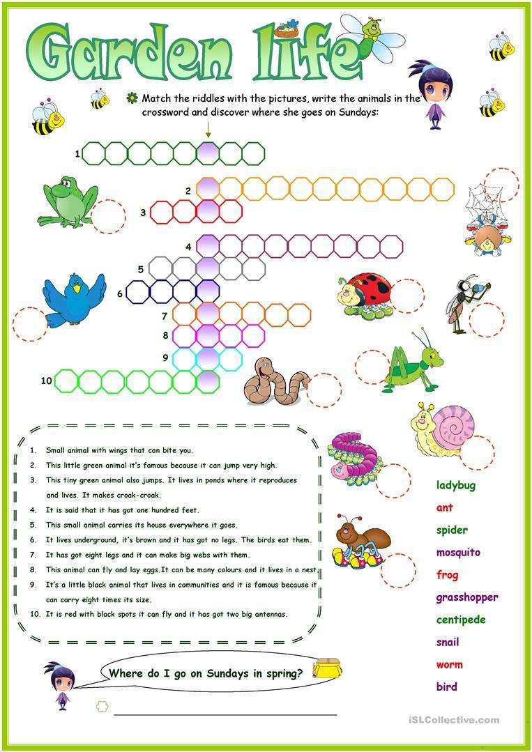 Animals In The Garden Crossword Worksheet - Free Esl Printable - Printable Gardening Crossword Puzzle