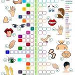 Body Parts   Crossword Worksheet   Free Esl Printable Worksheets   Printable Esl Crossword Worksheets