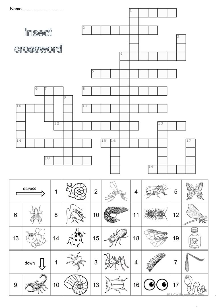Hairy Insect Crossword - Insect Foto And Image In 2019 - Printable Laxcrossword