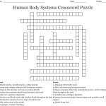 Human Body Systems Crossword Puzzle Crossword   Wordmint   Free Printable Crossword Puzzles Body Parts