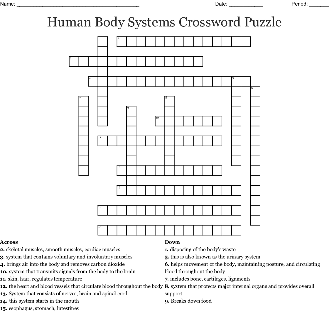 Human Body Systems Crossword Puzzle Crossword - Wordmint - Free Printable Crossword Puzzles Body Parts
