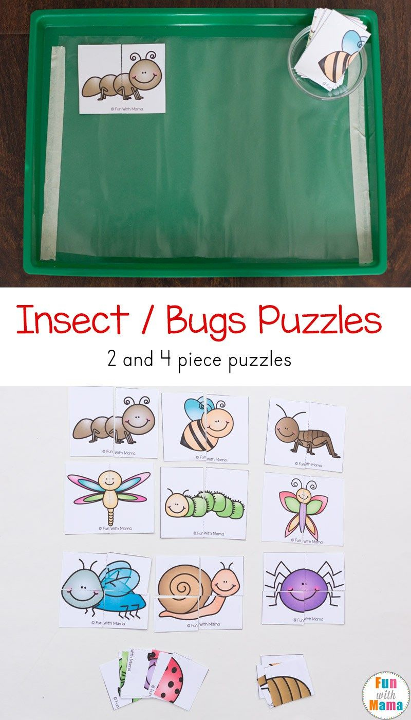 Insect Theme Printable Puzzles | Todds | Bug Activities, Insect - Printable 2 Piece Puzzles