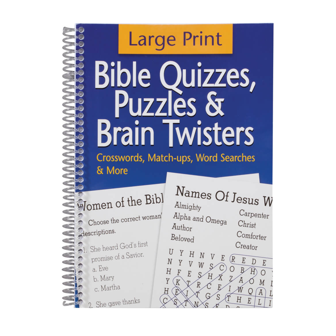 Large Print Bible Puzzle Book - Bible Puzzles - Walter Drake - Puzzle Print Reviews